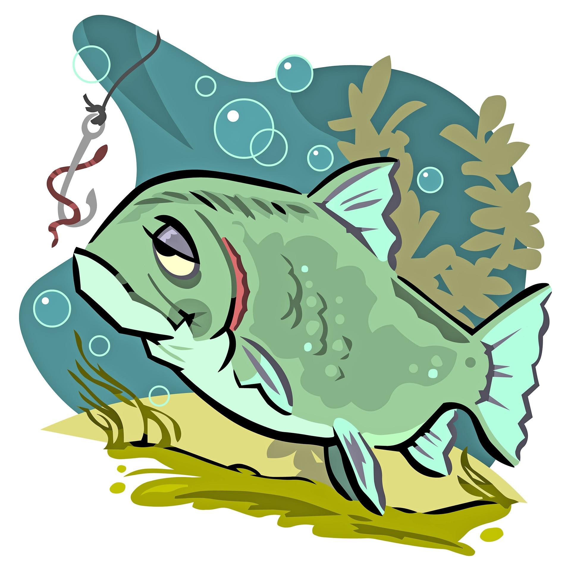 fish-2006060_1920